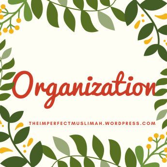 theimperfectmuslimah Organization